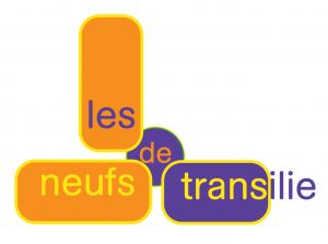 Logo 9transilie